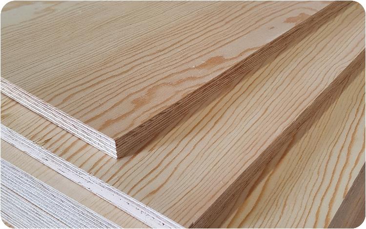 panneau pin radiata deco